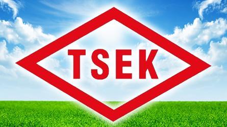 TSEK-belgesi-48545